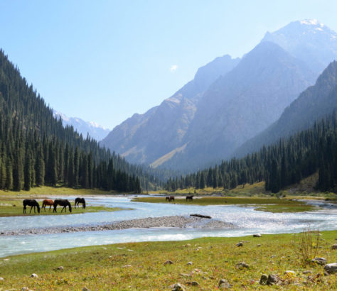 Tal Natur Karakol Kirgistan Landschaft