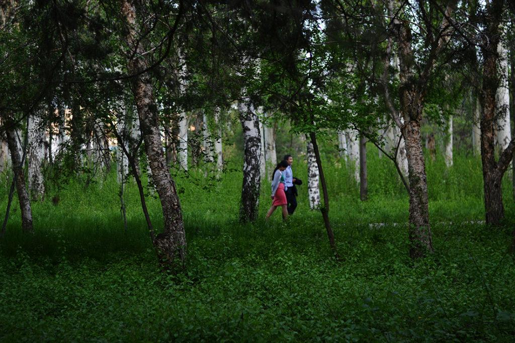 Bischkek Park Grün Spaziergang Paar