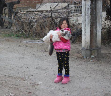 Katze Mädchen Kirgistan Tamga
