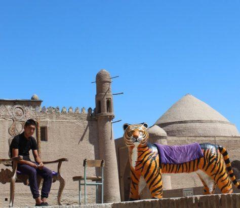 Chiwa Usbekistan Tiger