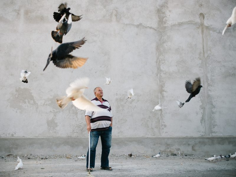 Der Mann und seine Tauben