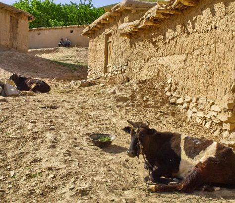 Boysun im Süden Usbekistans