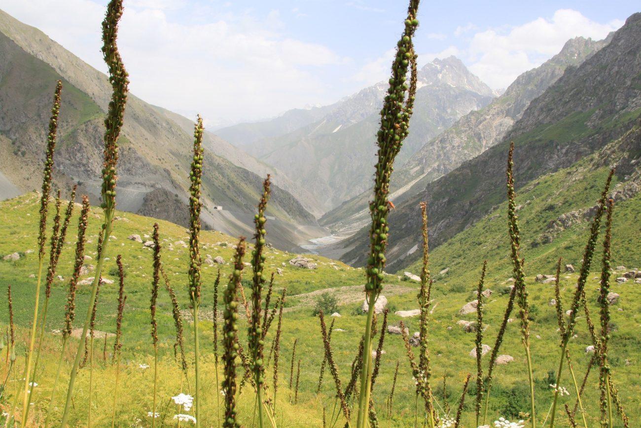 Tadschikistan Gebirge Wandern Tourismus