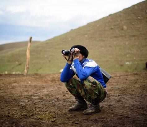 Viehzucht Gebirge Kirgistan Bild des Tages Antoine Béguier