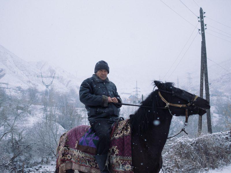 Ein Reiter im Winter