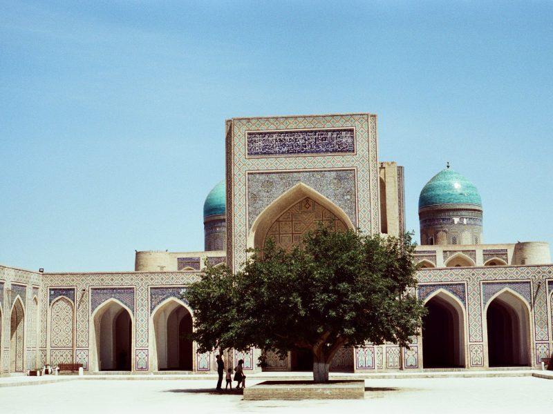 Maulbeerbaum Buchara Usbekistan Moschee Architektur
