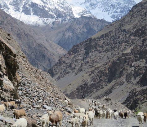 Landwirtschaft Pamir Tadschikistan Bild des tages