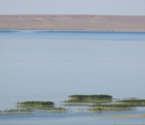 See in der Steppe