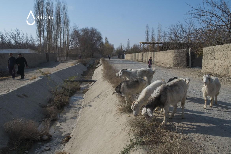 Le canal approvisionne Kirghiz et Tadjiks