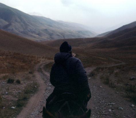 Cheval Kirghizstan Montagne