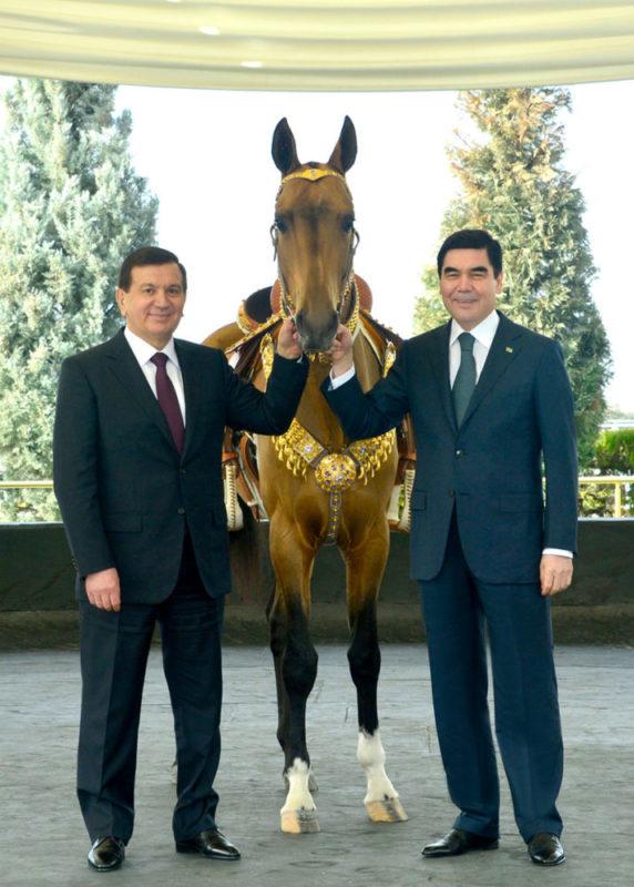 Mirzioiev, Berdimouhamedov et cheval