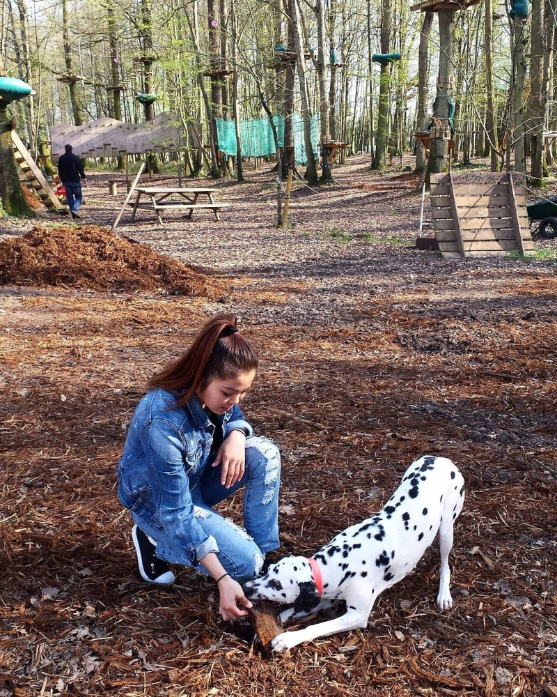 Diana Pernot chien Dalmatien