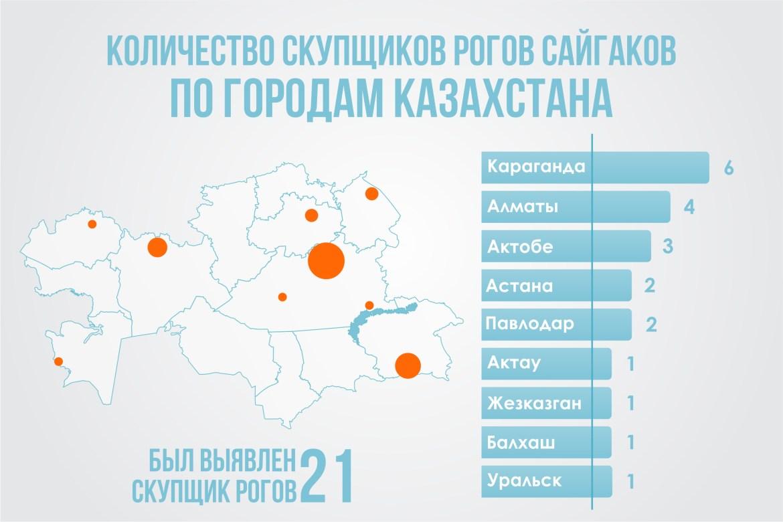 Saïga Braconnage Carte Kazakhstan