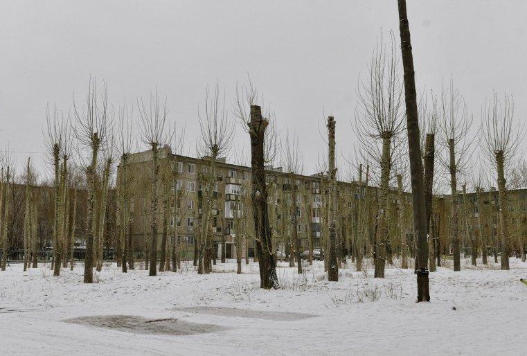 Ekibastouz Kazakhstan Arbres coupés Immeubles Neige