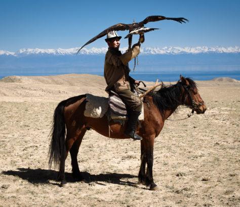 Chasse à l'aigle au Kirghizstan