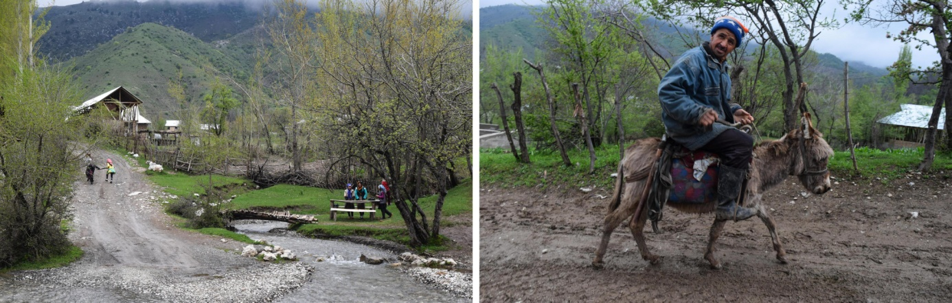 Arslanbob Nut Forest Kyrgyzstan