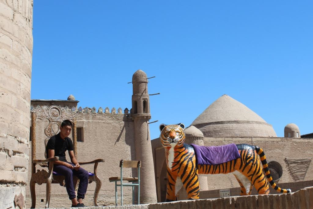 Tigre Khiva Ouzbékistan