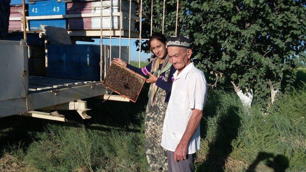 Les ruches de la ferme de Nozigul