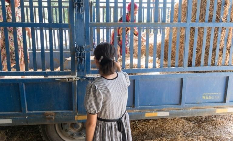 Gulnar Xinjiang Ouïgours