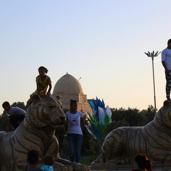 Tigres endormis Samarcande Ouzbékistan