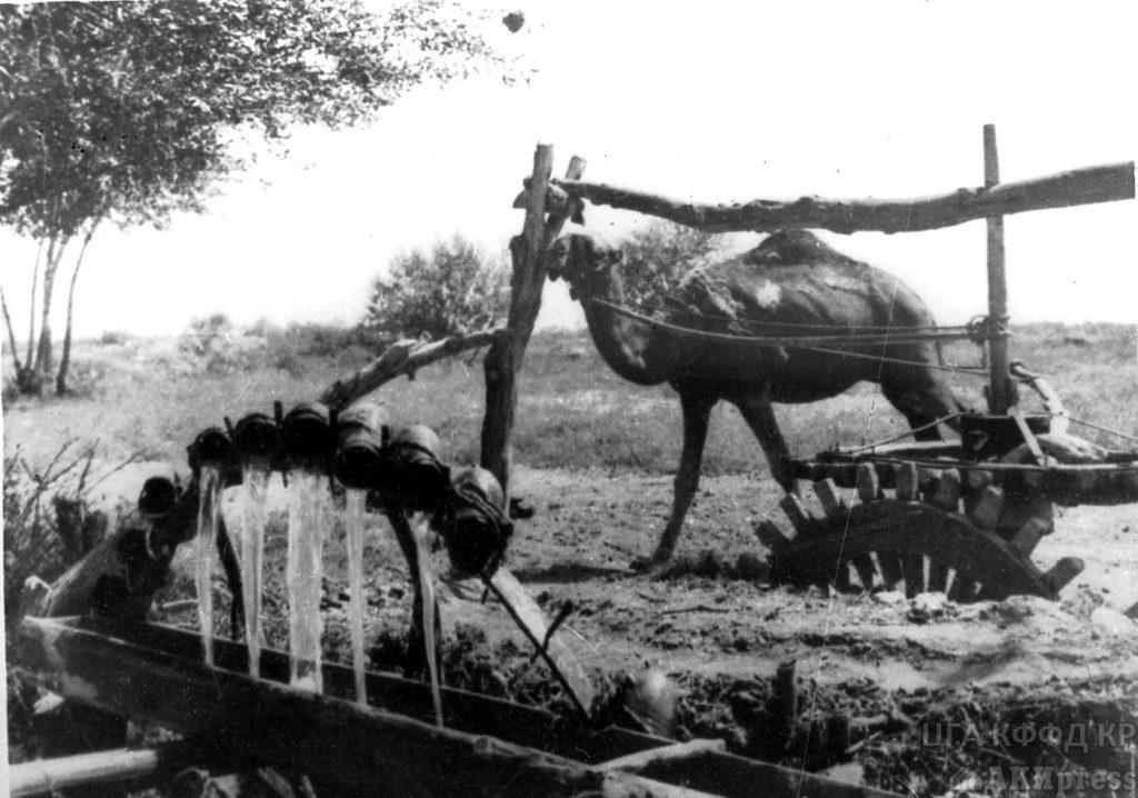 Tchigir - la roue de la vie / Photo des Archives d'État du Kirghizistan. La date et le lieu exacts de l'enquête sont inconnus