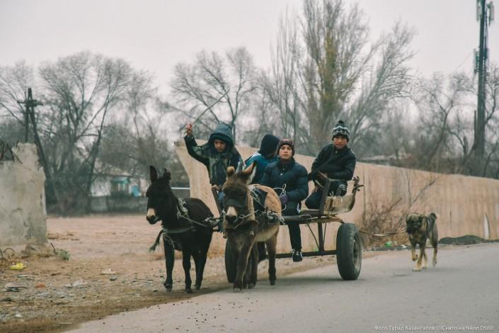 Jarkent Kazakhstan Ville Frontière Chine Âne Route Charrette