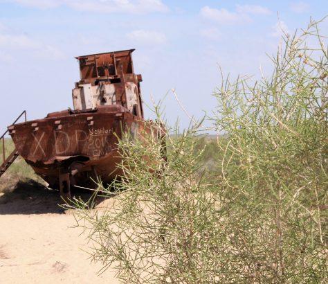 Ouzbékistan mer d'Aral Muynak