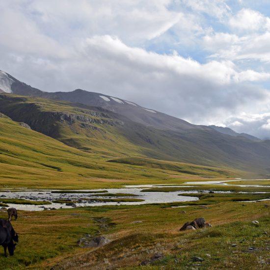 Naryn le col de Tosor Kirghizstan