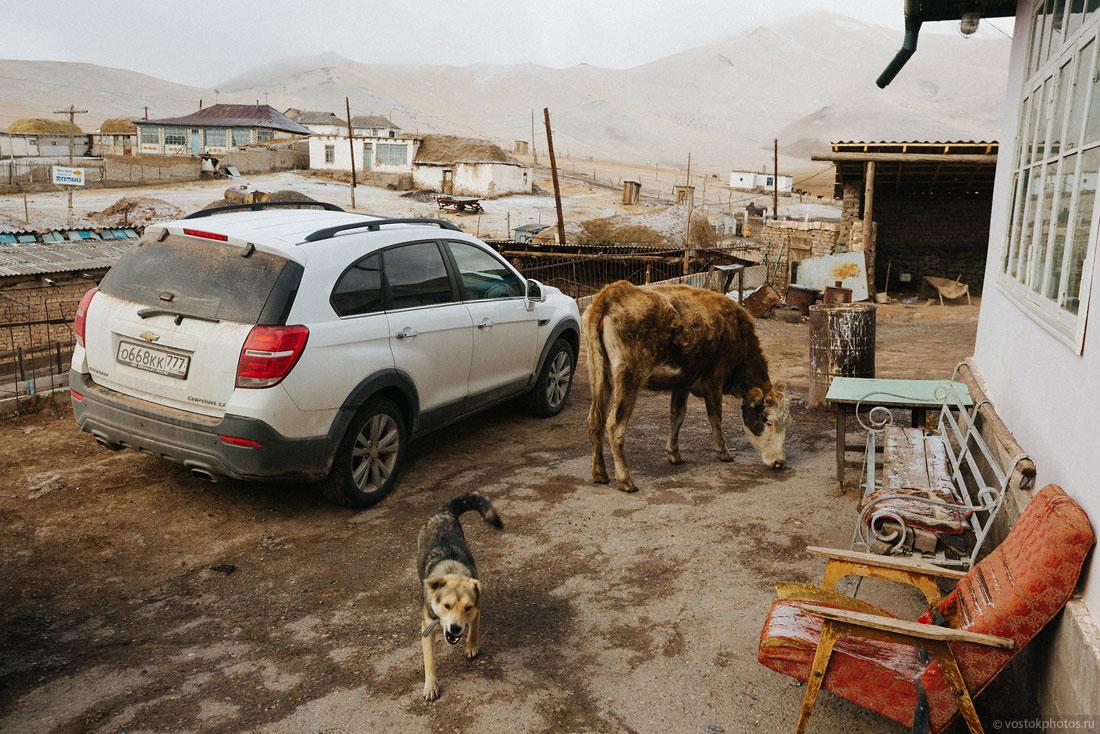 Kirghizstan Pamir Montagne Reportage Paysages Sary-Tach Voiture Chien Vache