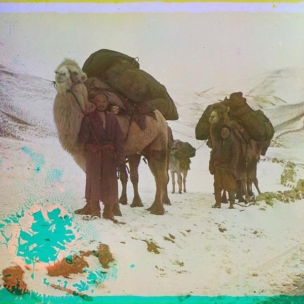 Asie centrale XXème siècle 1910 Voyage Sergueï Prokoudine-Gorski Empire russe Photographie Samarcande Ouzbékistan Chameaux