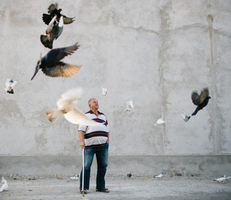 Un homme regarde ses pigeons s'envoler