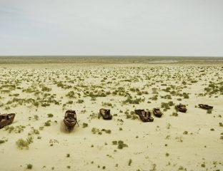 Aral Mer Ouzbékistan Kazakhstan Forêt