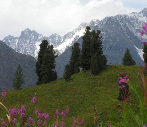 Réserve naturelle Ramit Monts Gissar Tadjikistan