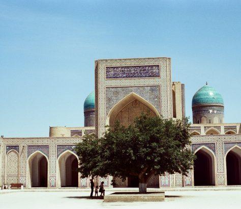 Boukhara Ouzbékistan mûrier mosquée architecture