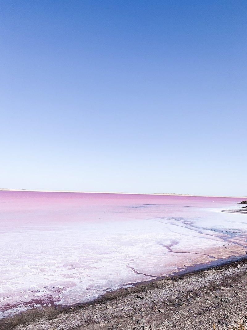 Lac Rose Kobeytouz Kazakhstan Algues Tourisme