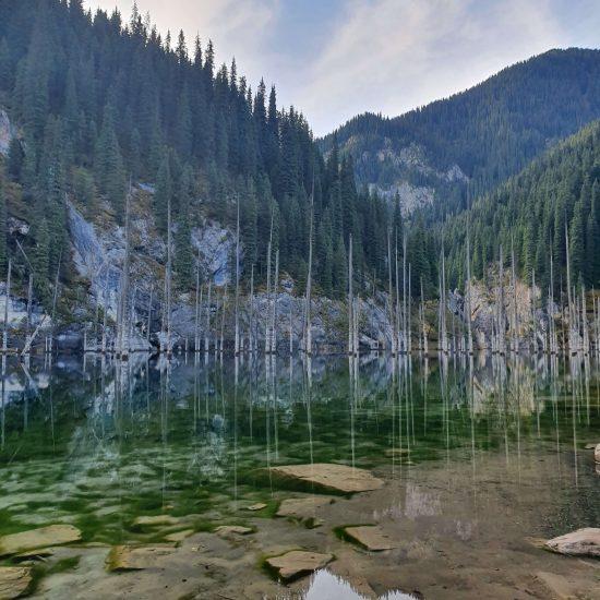 Fôret Marine Lac Kaindy Kazakhstan Photo du Jour