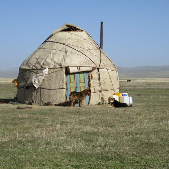 Kirghizstan Song-Koul Yourtes Chien