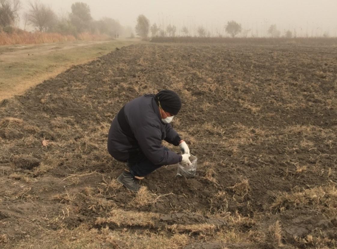 Pesticide Tadjikistan paysan champs