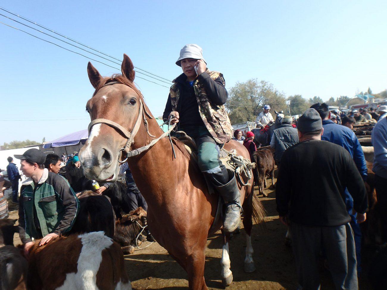 Kirghizstan Kotchkor Bazar Cheval
