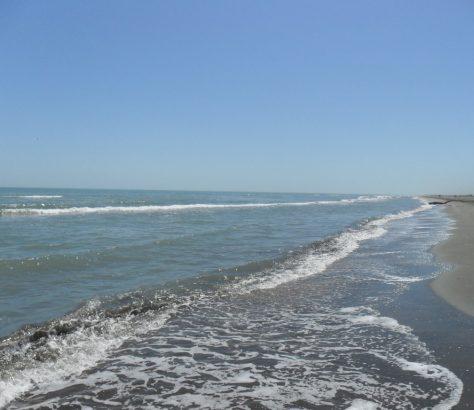 Mer Caspienne Eau Environnement Politique Catastrophe Kazakhstan Turkménistan