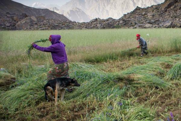 tadjikistan pamir agriculture femmes nourriture