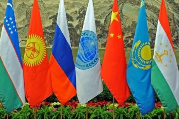 Photo drapeaux des membres OCS
